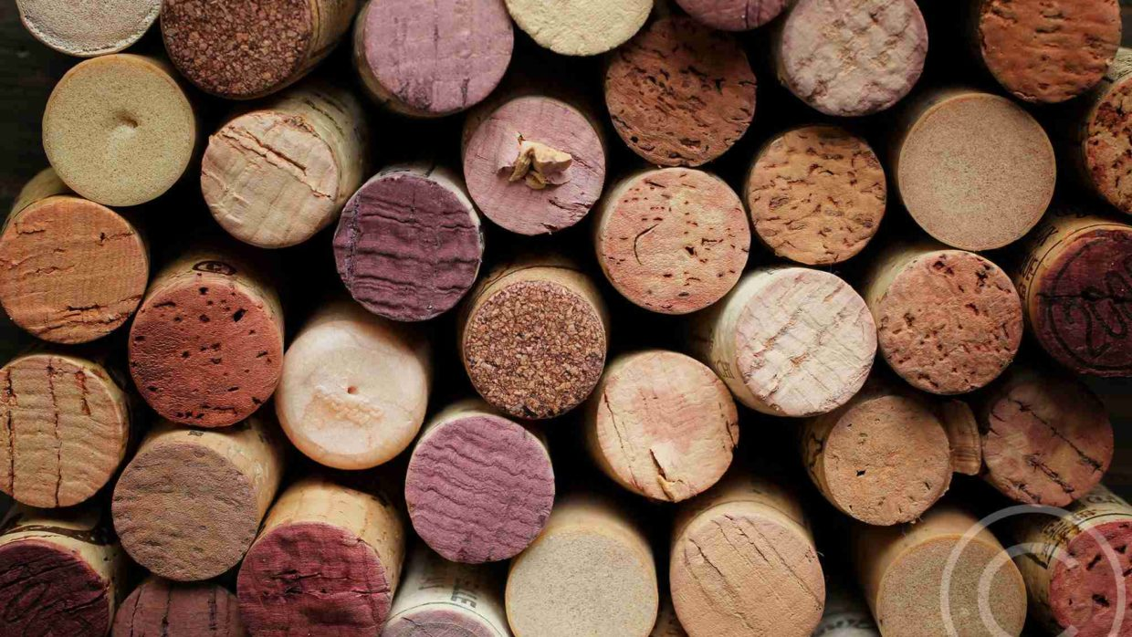 Exploring Effects On Wine